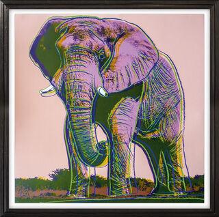 "Bild ""African Elephant (FS II. 293)"" (1983)"