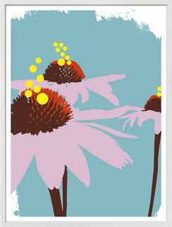 """Bild """"Echinacea"""" (2016)"""